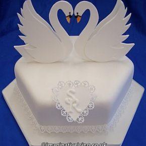 Engagement Swans