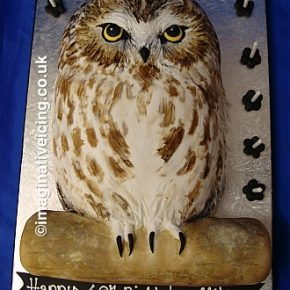 Owl Shaped Birthday Cake